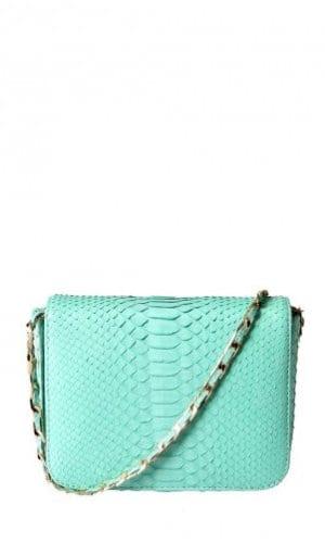 Mint Downing Python Crossbody Bag By Cashhimi