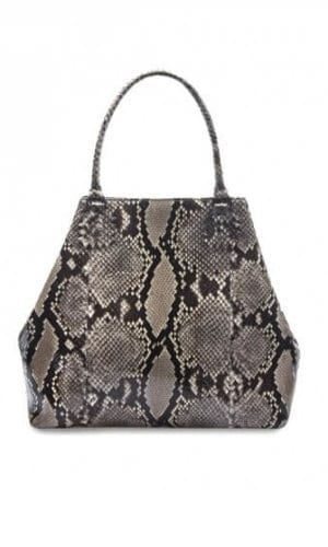 Brown Python Roxbury Tote Bag By Cashhimi