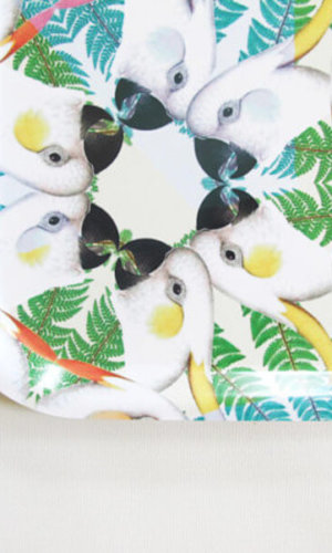 Parrots Birch Wood Tray