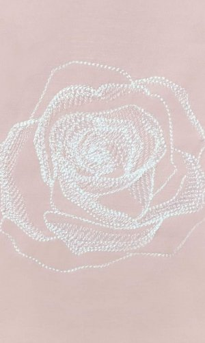 Blush Rose Embroidered Top