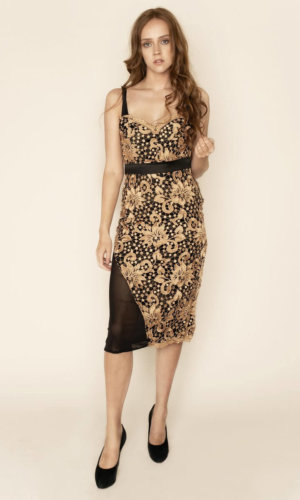 Hope Guipure Lace and Mesh Midi Dress