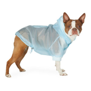 Moncler Genius Blue Poldo Dog Couture Edition Waterproof Coat