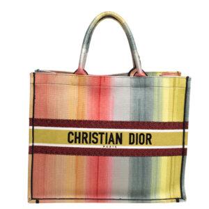 Dior Multicolor Dioraura Canvas Book Tote